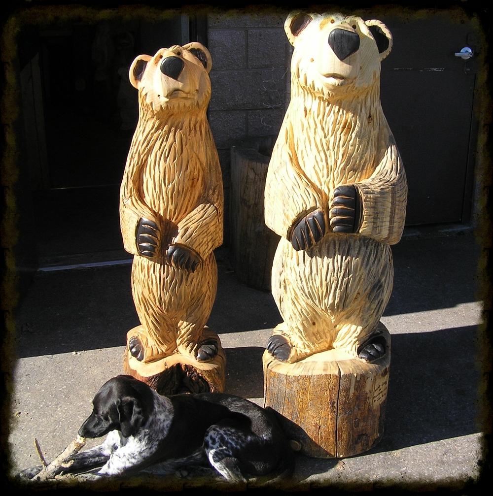 4-5 ft Bears