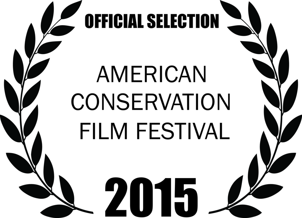 ACFF2015 Official Selection Laurels large  .png
