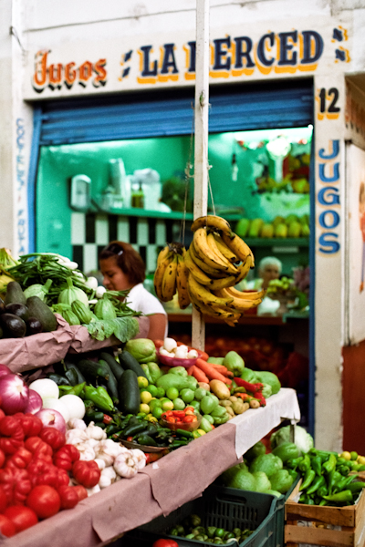 Oaxaca Studie 4 web.jpg