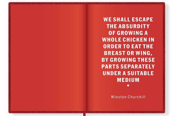 In_Vitro_Meat_Cookbook03.jpg