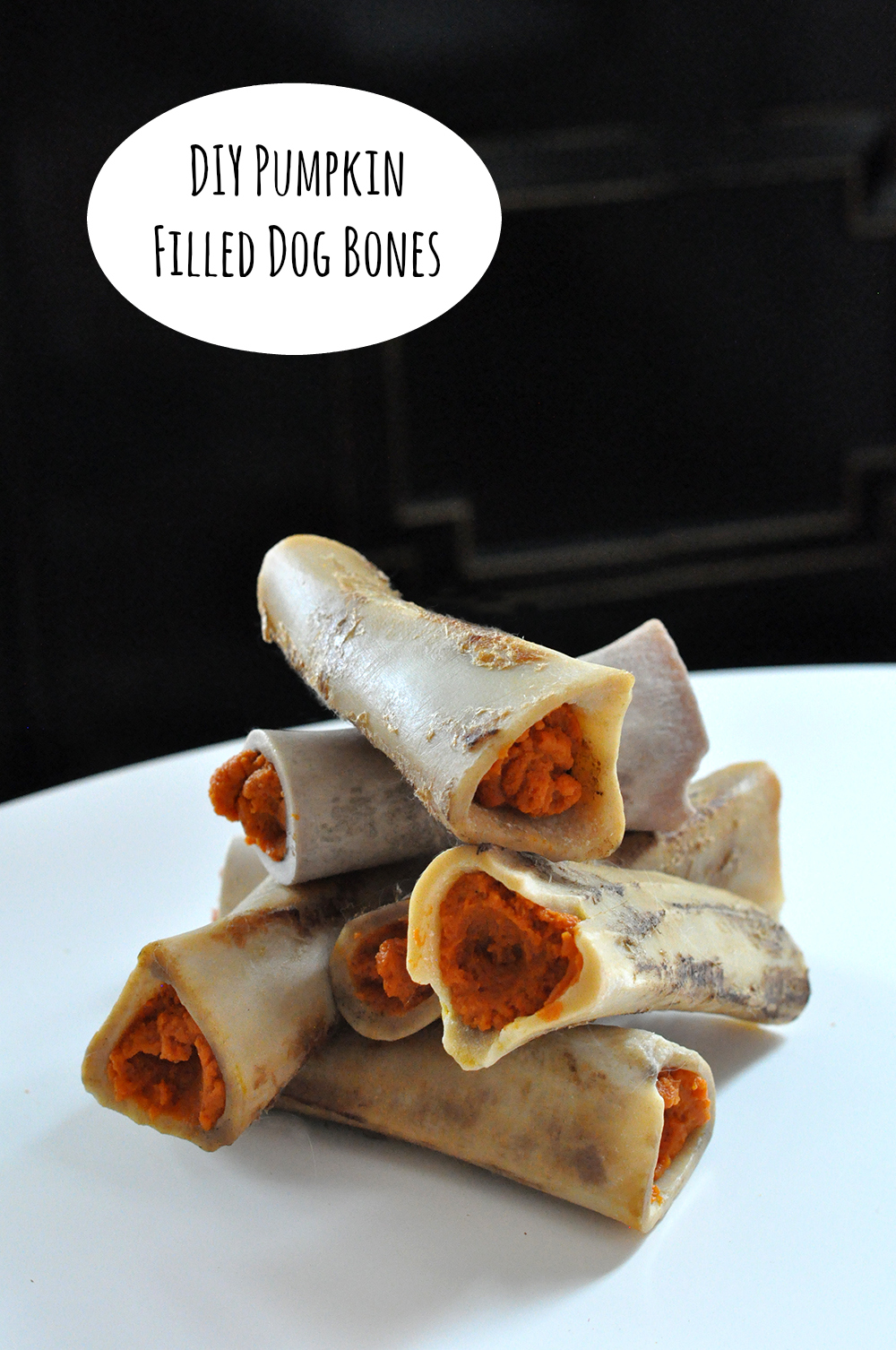 diy pumpkin filled dog bones