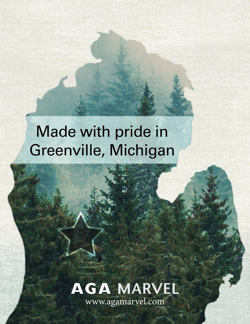 display - Made in Greenville Poster.jpg