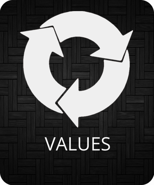 VALUES 1.png