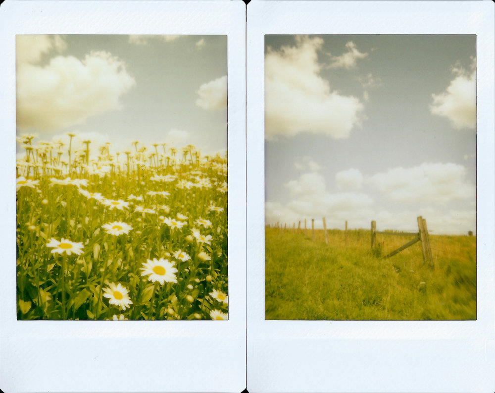 Instax Polaroids, shot with a yellow filter