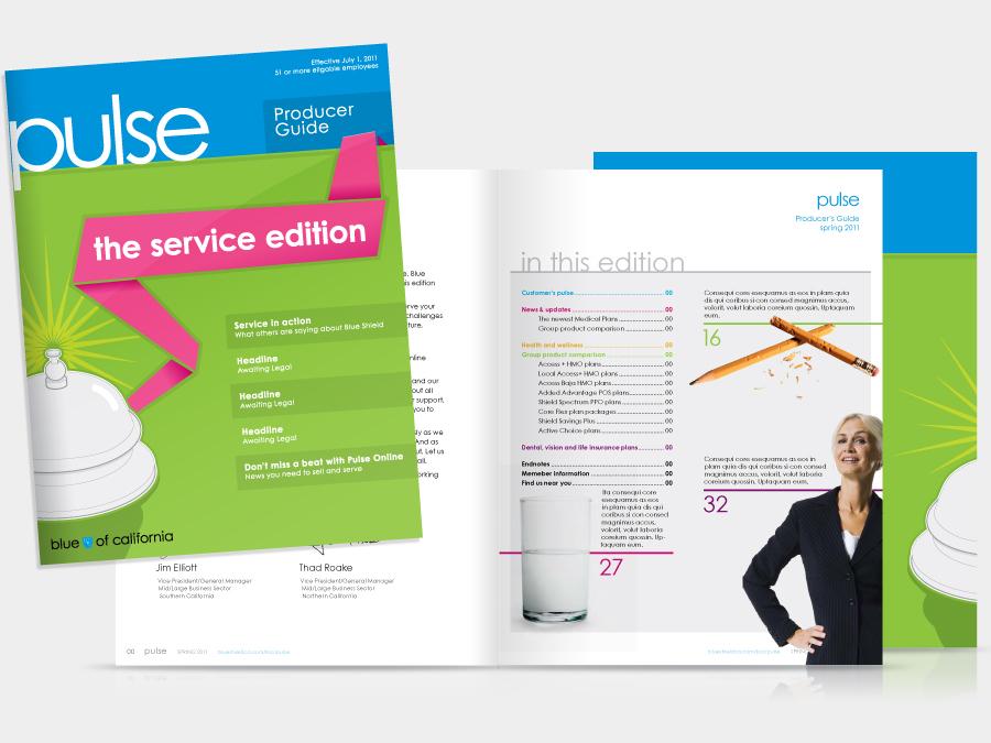 BSC_Pulse_Cover&Spread.jpg