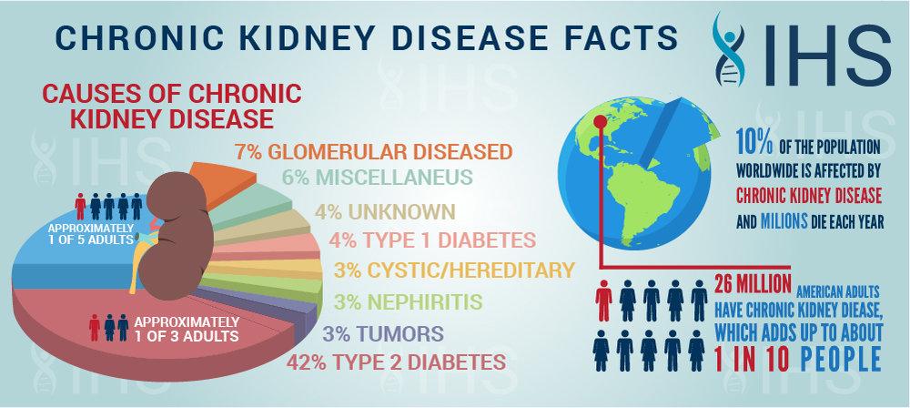 kidney infographic1 JPG medium.jpg
