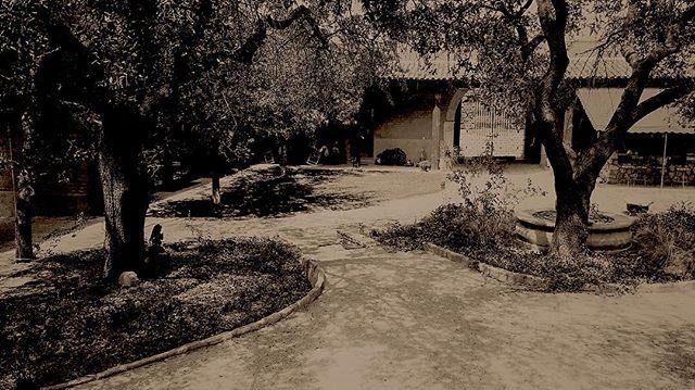 #HaciendaSanGabriel #WeekendsAtTheRanch