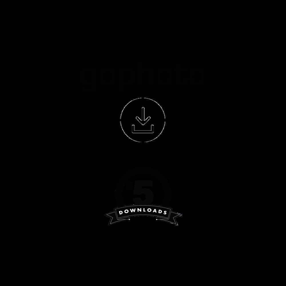 GP_download Squarespace.png