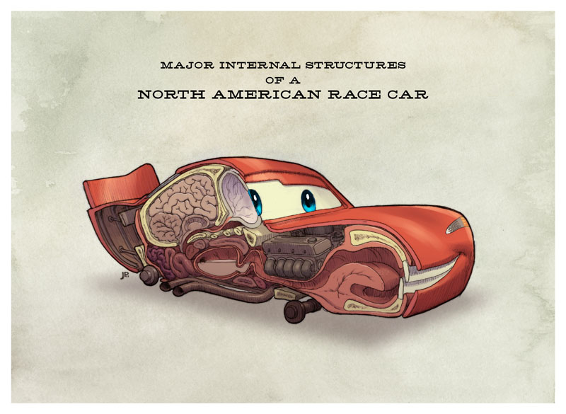 Anatomy of cars