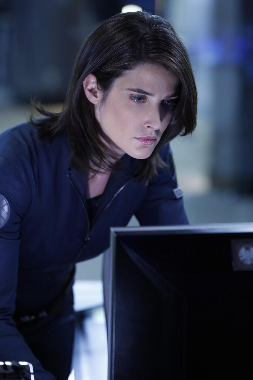 Agents of S.H.I.E.L.D.73120129.jpg