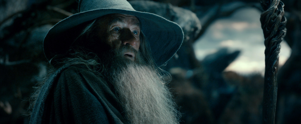 new-image-from-the-hobbit-the-desolation-of-smaug-4.jpg