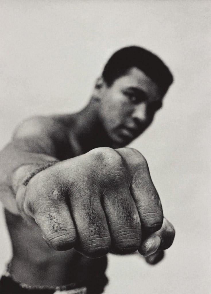 ang-lee-set-to-direct-3d-boxing-legend-film-header.jpg