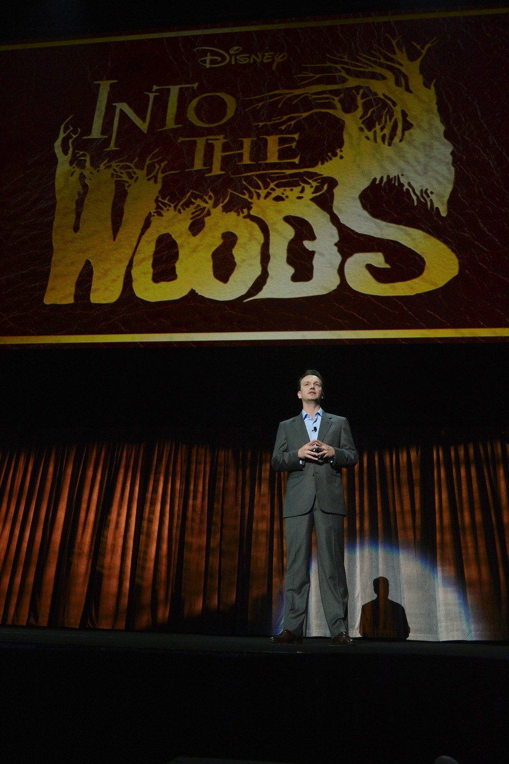 Into the Woods 813102.jpg