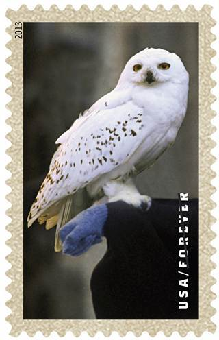 Harry-Potter-Stamp-5.jpg