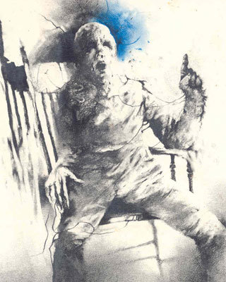 Scary stories to tell in the dark book images
