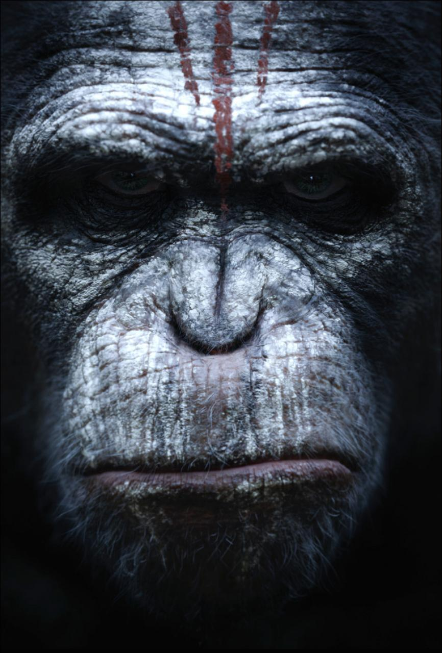 Dawn_of_the_Planet_of_the_Apes_5.jpg