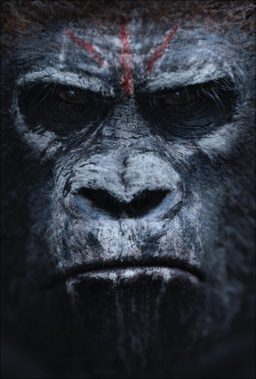 Dawn_of_the_Planet_of_the_Apes_6.jpg