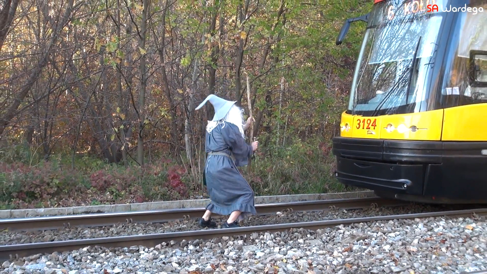 guy-dressed-as-gandalf-stops-a-train.jpg