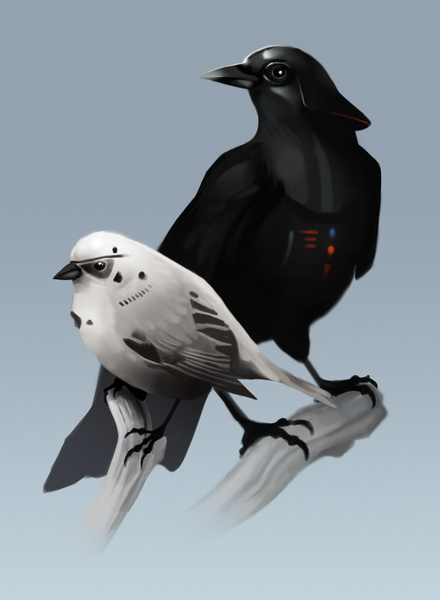 star-wars-bird-art-the-dark-side-of-the-flock