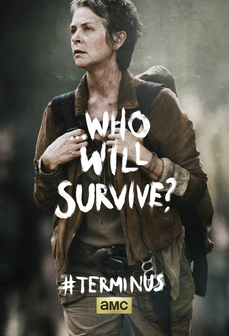 Two New Posters for THE WALKING DEAD Season 4 — GeekTyrant