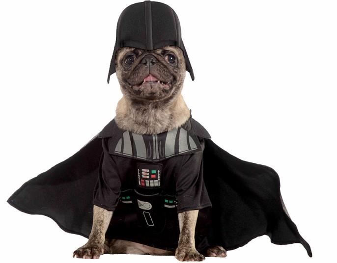 dogs-pug-vader_2918026k.jpg