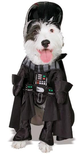 dogs-vader-2_2918065k.jpg
