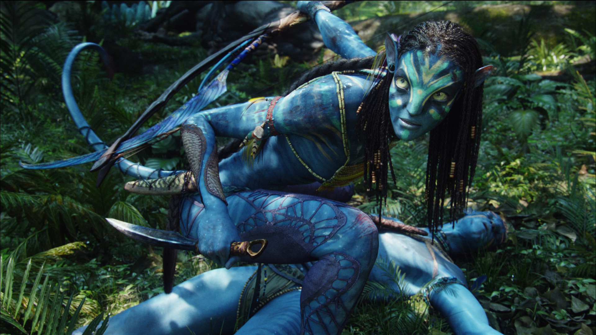 james cameron and cirque du soleil developing avatar live show