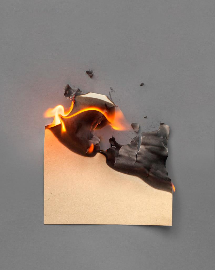Flora Camoscio by Inapa as Fahrenheit 451