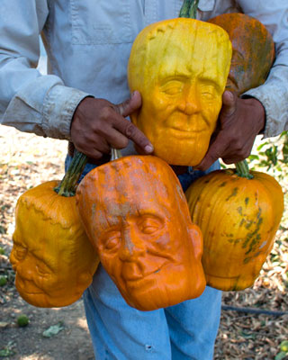 Farmer Grows Pumpkins in Frankenstein Face-Shaped Molds ...