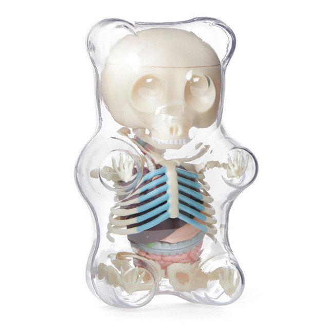 Anatomy Of A Gummy Bear Geektyrant
