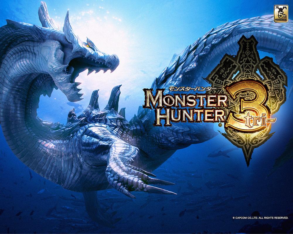 Monster_hunter_3_tri_wall_1.jpeg