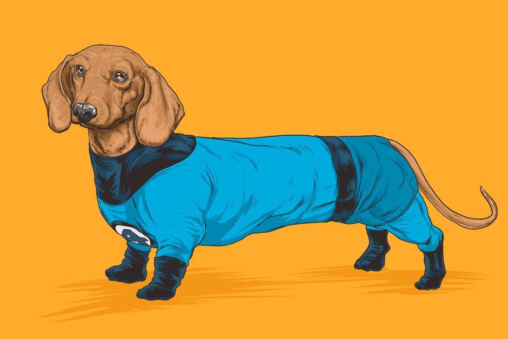 Josh-Lynch-Dog-FF.jpg