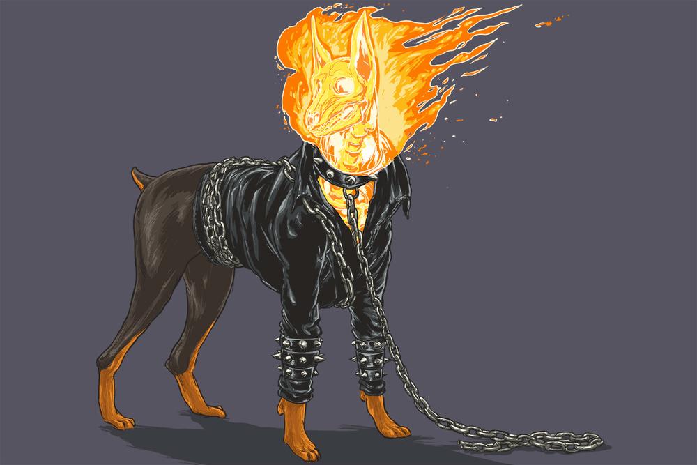 Josh-Lynch-Dog-Ghost-Rider.jpg