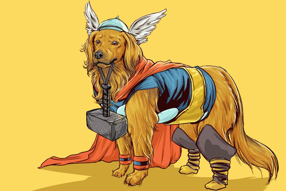 Josh-Lynch-Dog-Thor.jpg