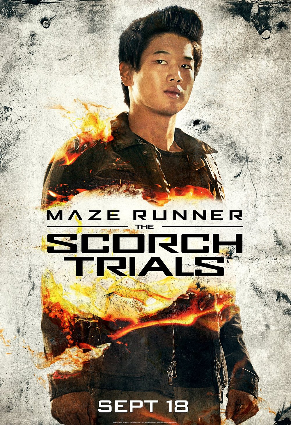 The maze runner the flare