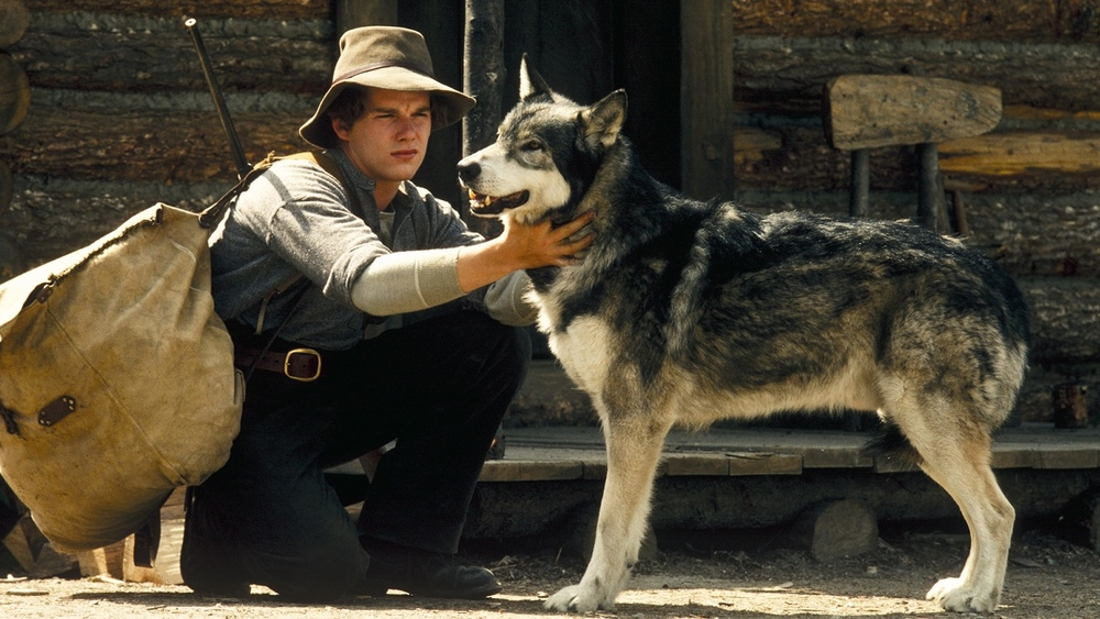 a summary of jack londons white fang Summary story the white silence by jack london  white fang, written by jack london,  the importance of setting in jack londons to build a fire and kate.
