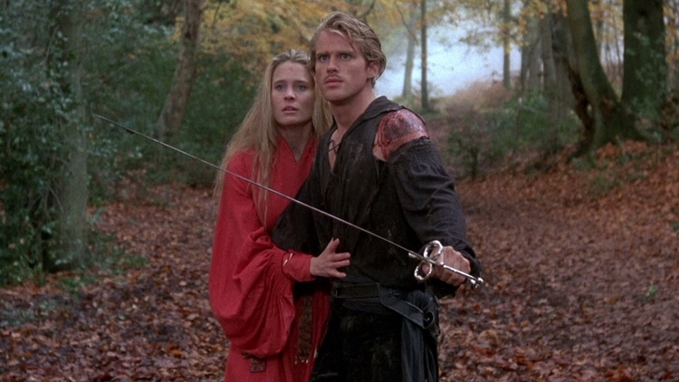 the-princess-bride-breakdown-of-difference-between-the-book-and-the-film