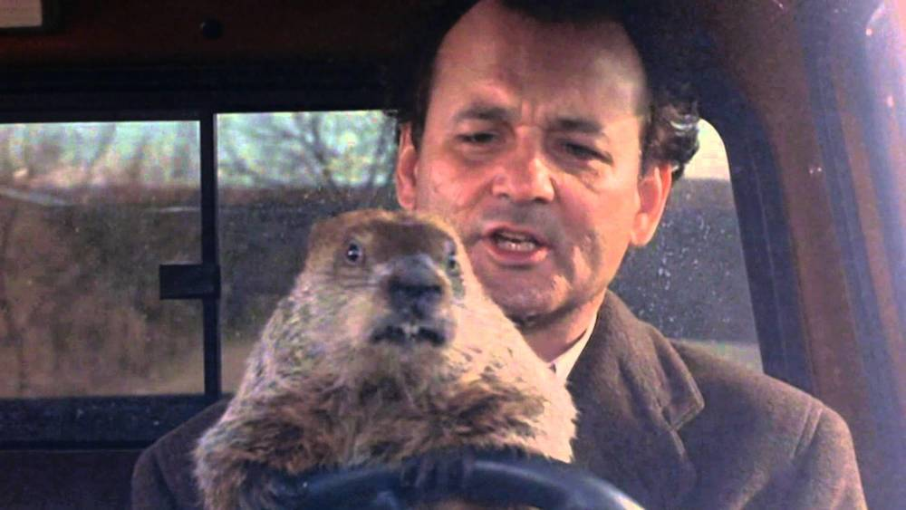 """essay about groundhog day movie What does the phrase """"it's like groundhog day every day"""" mean, and where does it originate  the movie groundhog day is about a man reliving the same day."""