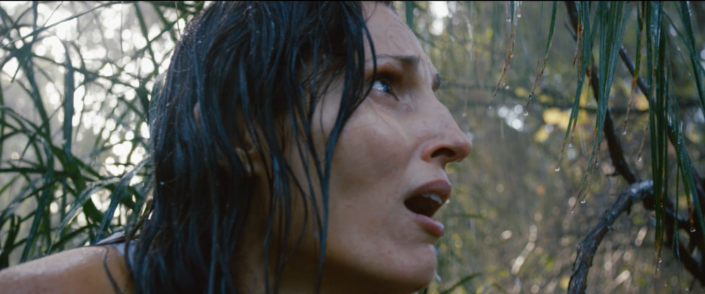 review-shallow-water-is-a-lean-mean-brutally-awesome-monster-movie22