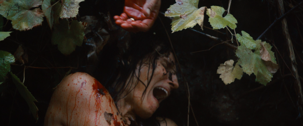 review-shallow-water-is-a-lean-mean-brutally-awesome-monster-movie55