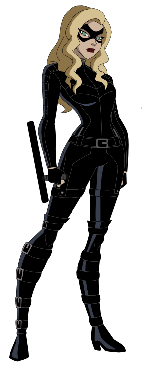 dcau_cw__black_canary_by_amtmodollas-db629fy.png
