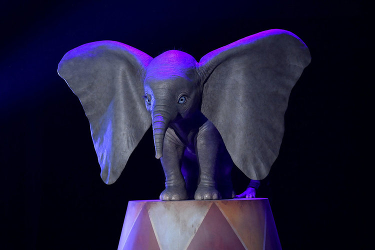 heres-your-first-look-at-dumbo-in-tim-burtons-live-action-adaptation1