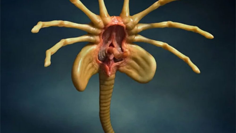 Alien Facehugger Replica Will Turn Your Desk Into A