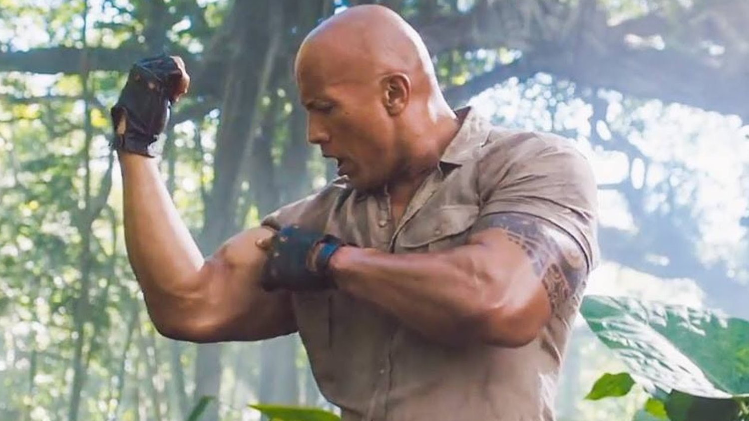 Dwayne Johnson's Action Film RED NOTICE Moves to Netflix and Ryan ...