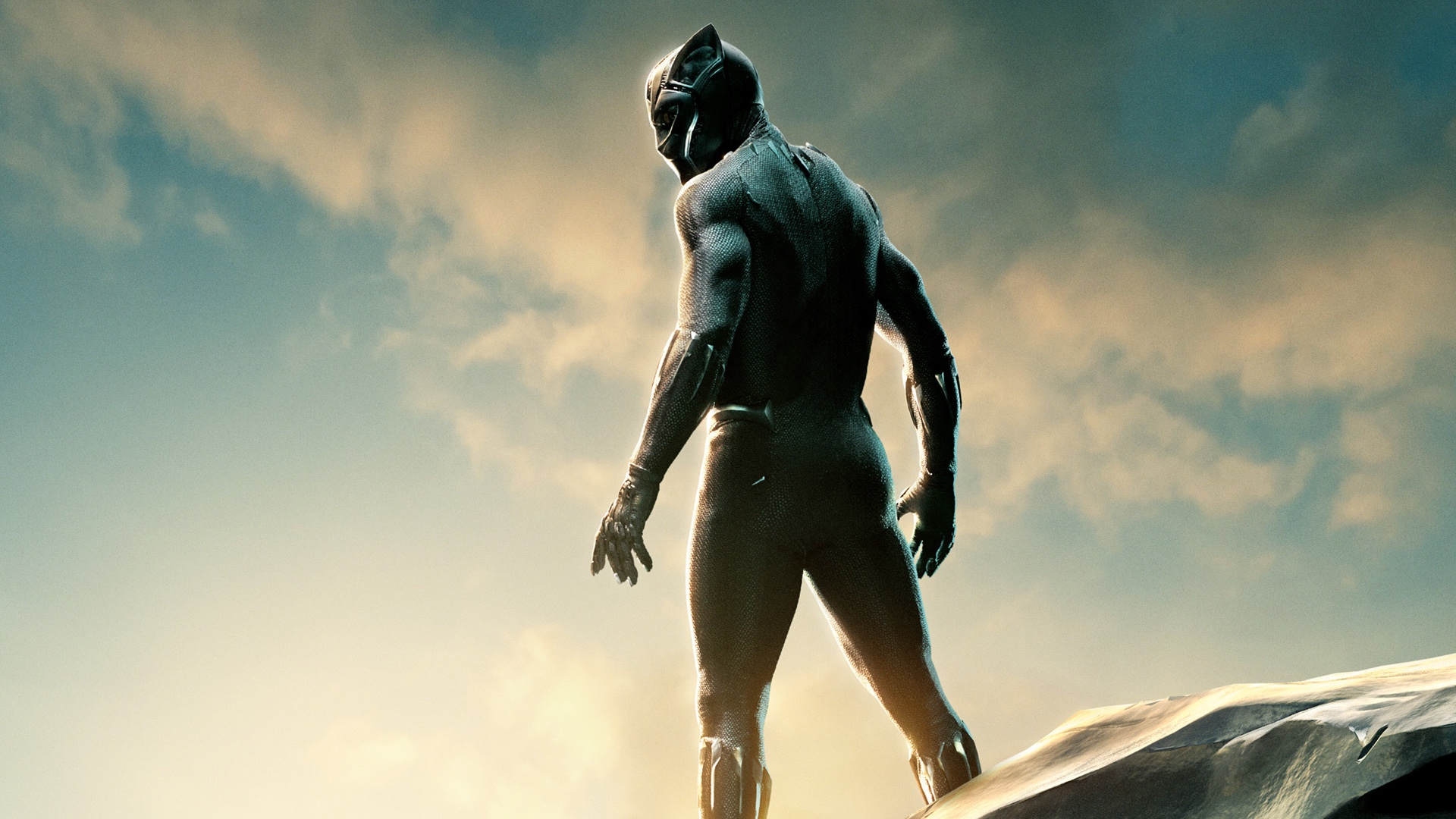 Image result for black panther scenes
