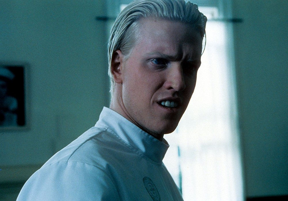 cary-elwes-and-jake-busey-join-stranger-things-season-3