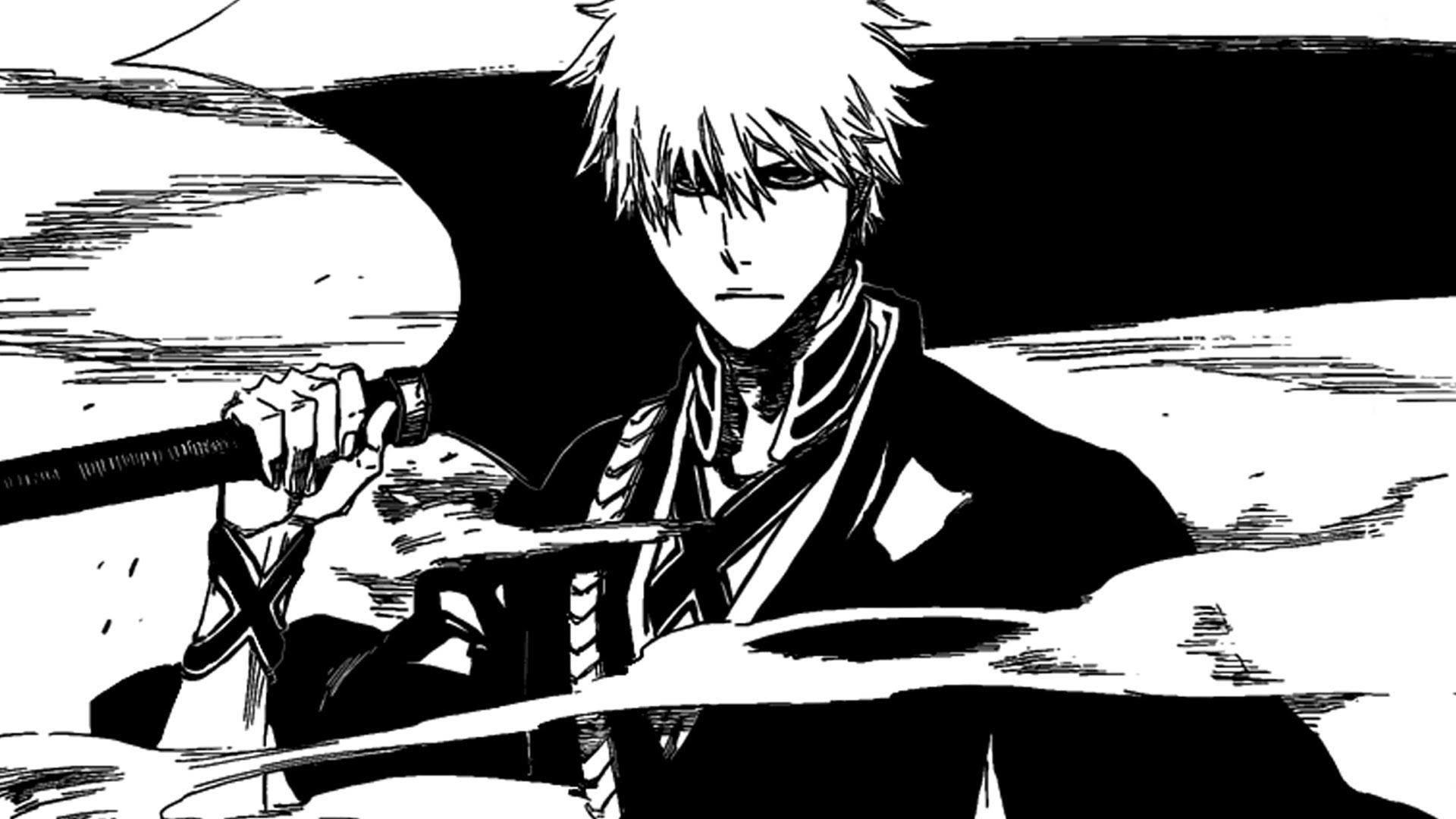 My first introduction to bleach was the anime not the manga however when the anime was busy doing fillers and falling behind the manga i started to read