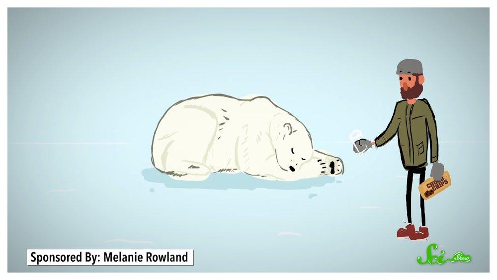 if-youve-ever-wondered-what-polar-bear-milk-tastes-like-science-has-an-answer-social.jpg