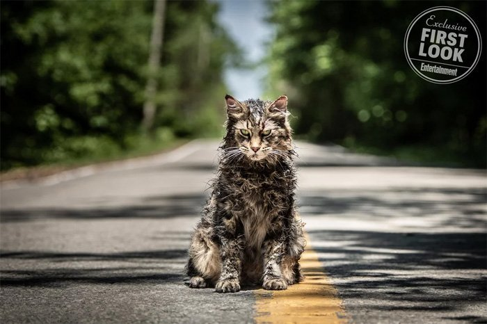 first-photos-released-for-the-remake-of-stephen-kings-pet-semetary9