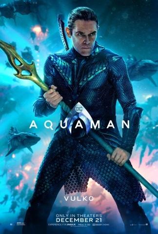aquaman-poster-vulko-1143056.jpeg